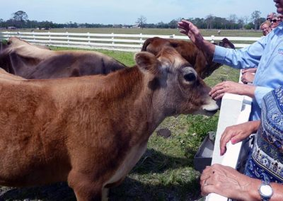 Swiss American Club of Southwest Florida Visited Rosy Tomorrows Heritage Farm 2018