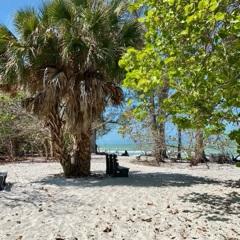 Delnor Wiggins Beach